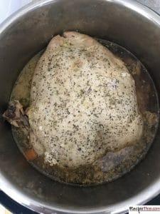 How To Instant Pot Frozen Turkey Breast?
