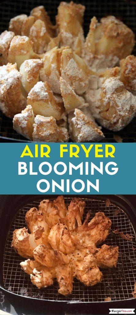 Air Fryer Blooming Onion recipe