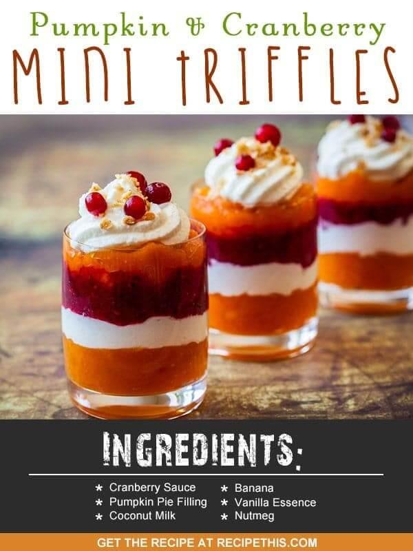 Blender Recipes | Pumpkin & Cranberry Mini Trifles Recipe from RecipeThis.com