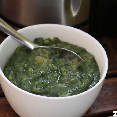 Soup Maker Spinach Soup