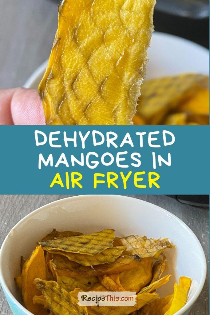 air fryer dehydrated mango