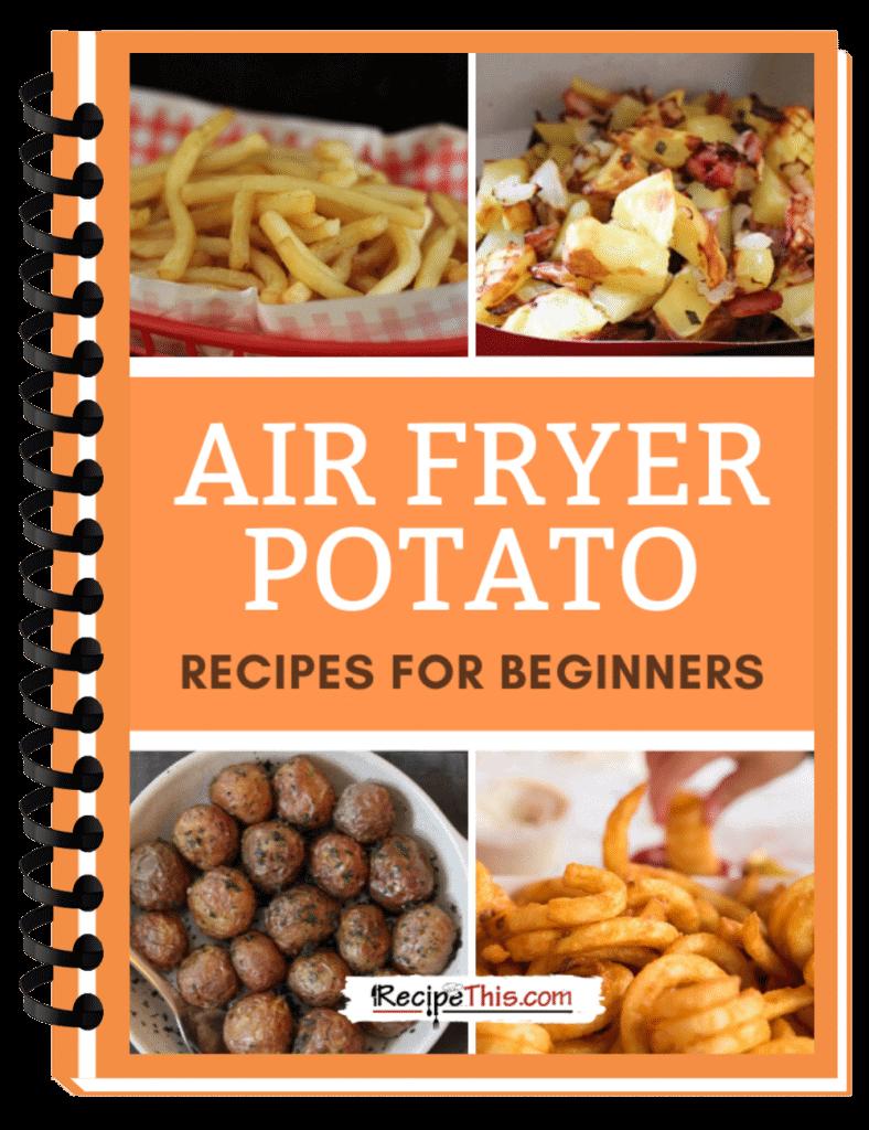air fryer potato cookbook binder